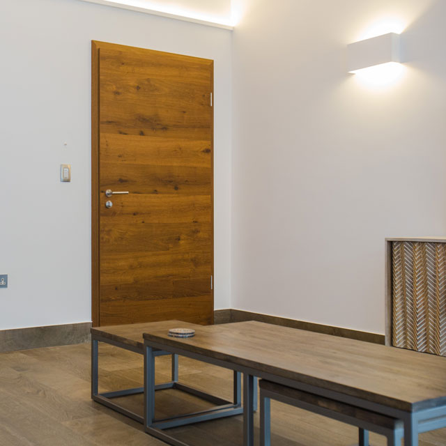 interior modern design doors