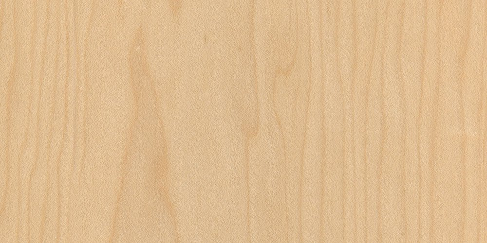 Maple real wood veneer sample