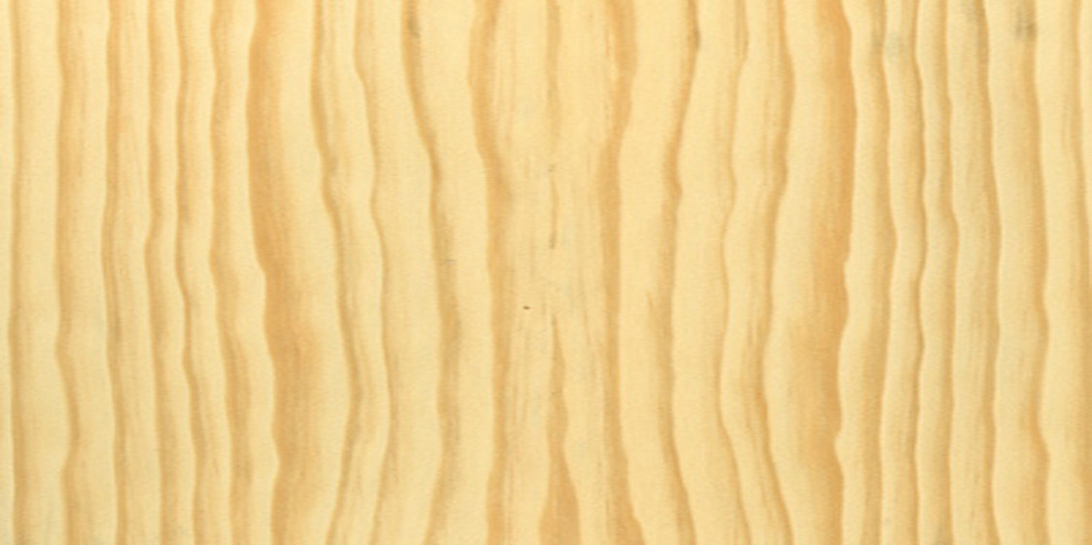 Pine real wood veneer sample